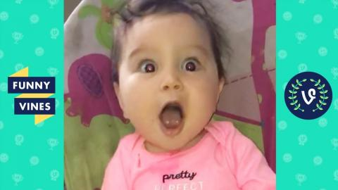 Image of: Gif Try Not To Laugh Epic Kids Fails Cute Baby Videos Compilation Funny Vines Twitter Try Not To Laugh Epic Kids Fail Compilation Funny Vines Baby