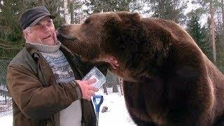 Bear Man Of Finland Has An Unbreakable Bond With Brown Bears